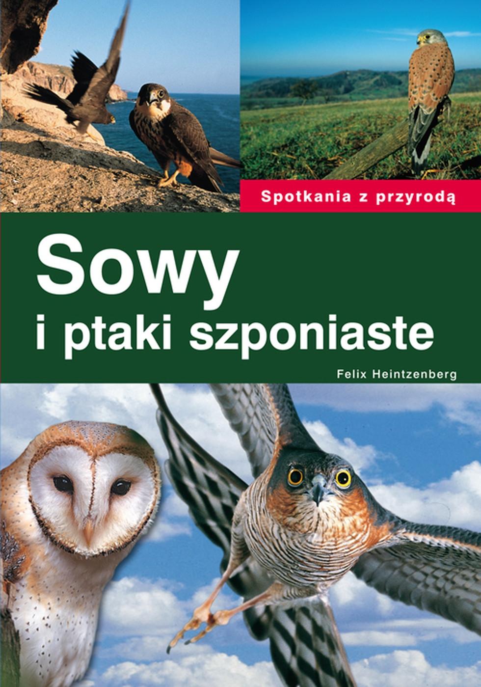 Sowy i ptaki szponiaste