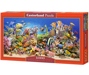 Puzzle 4000 Underwater life