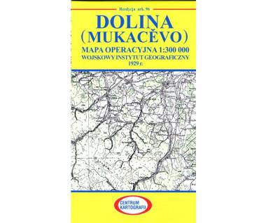 Dolina (Mukacevo) mapa operacyjna ark.96 reedycja WIG 1929r.