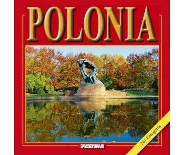 Polonia (241 fotografie)
