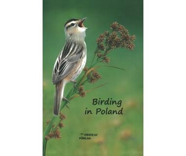 Birding in Poland