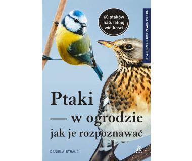 Ptaki w ogrodzie-Jak je rozpoznawać