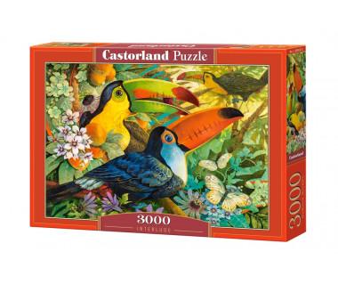 Puzzle 3000 Interlude