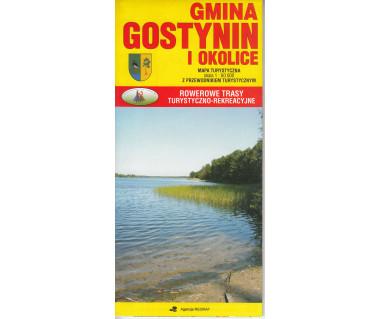 Gmina Gostynin