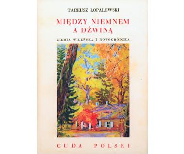 Między Niemnem a Dźwiną. Ziemia wileńska i nowogrodzka (reprint)