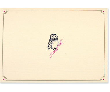 Kartka mini Owl Portrait