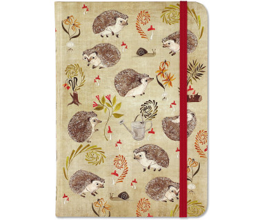 Notes Hedgehogs