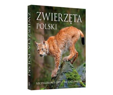 Zwierzęta polski. Szczegółowe opisy 300 gatunków