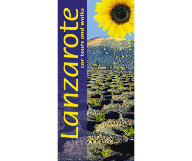 Lanzarote sunflower car tours and walks