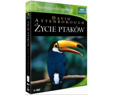 Życie ptaków [3 DVD]