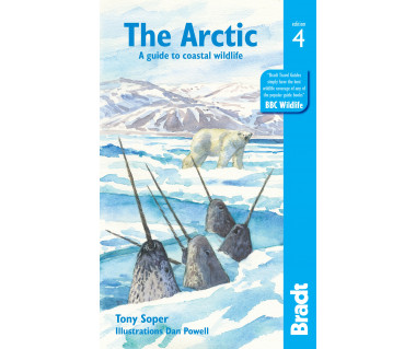 The Arctic. A guide to coastal wildlife