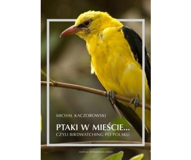 Ptaki w mieście...czyli birdwatching po Polsku