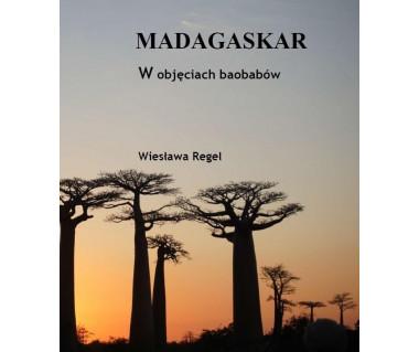 Madagaskar. W objęciach baobabów