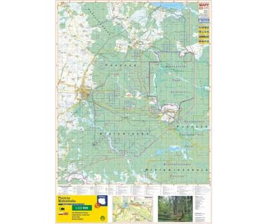 Puszcza Białowieska mapa ścienna